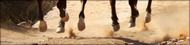 Galloping-hooves